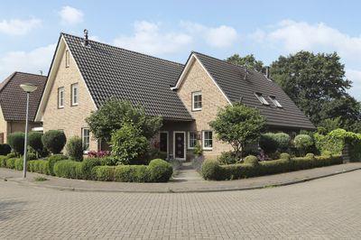 Bark 15, Nieuw-amsterdam