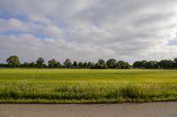 Sparrendreef 0-ong, Oostrum