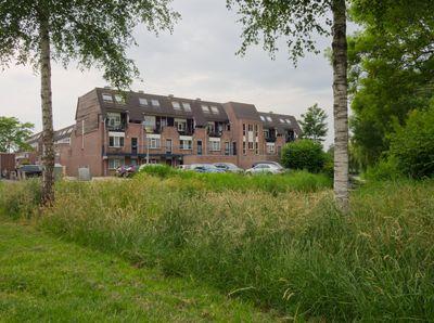 Els 4, Heerenveen