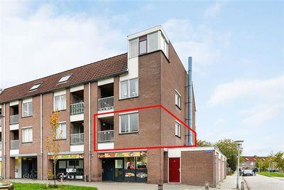 Reiger 24, Hoorn