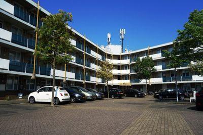 Zandbank, Noordwijk ZH