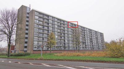 Metaallaan 229, Groningen