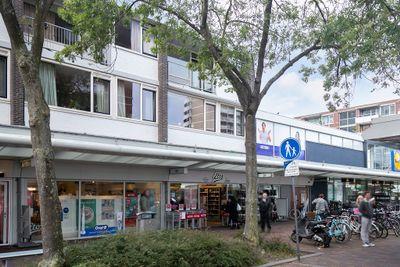 Alphons Diepenbrockhof 50, Den Haag
