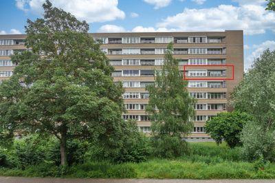 Rijnbeekstraat 81, Venlo