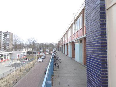 Rapenburchdreef, Utrecht