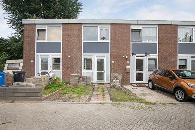 Steurweg 72, Hoogvliet Rotterdam