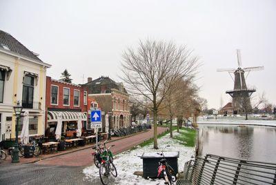 Rijnsburgersingel, Leiden