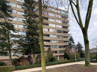 Venuslaan, Eindhoven