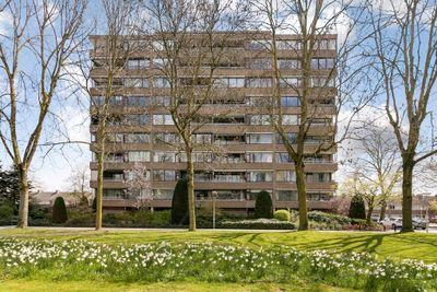 Venuslaan 317, Eindhoven