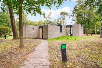 Lommerbergen 675, Reuver
