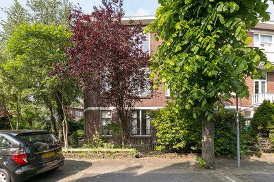 Ieplaan 38, Rijswijk