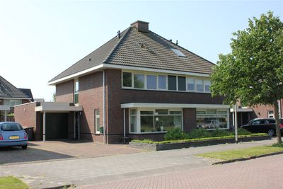 Tjatting 41, Hippolytushoef