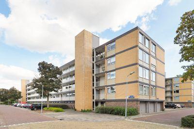 Adriaen Willaertstraat 57, 's-Hertogenbosch