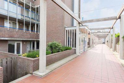 Zwolsestraat, Den Haag