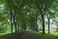 Zijtak 6, Klijndijk