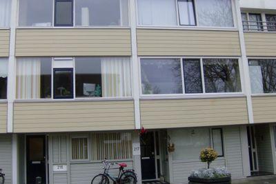 Ypelobrink, Enschede