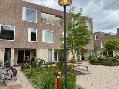 Lunettenhof 11, Groningen