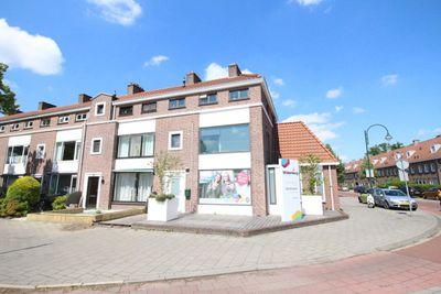 Piuslaan, Eindhoven