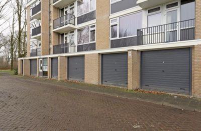 Epelenberg, Breda