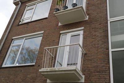 Wijnandt van Elststraat, Rijswijk