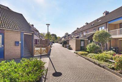 Janswaal, Hoogvliet Rotterdam