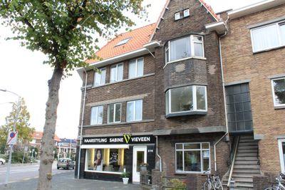Van De Wateringelaan, Voorburg