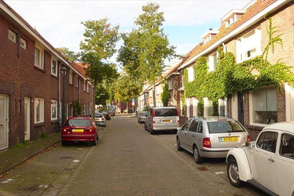 Ranonkelstraat, Eindhoven