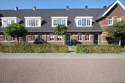 Tafelbergerhout, Harderwijk