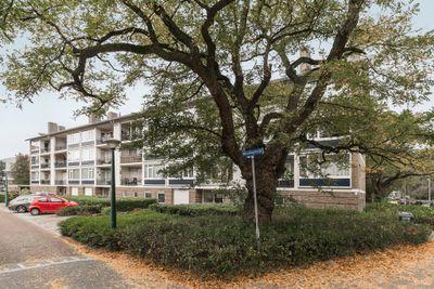 Welschapsedijk 21, Eindhoven