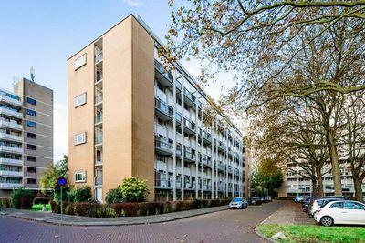 Van Bosseplantsoen, Dordrecht