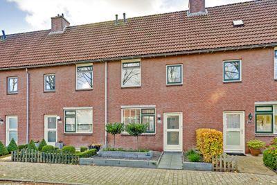 Patio 174, Hoorn