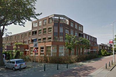 Laan van de Mensenrechten, Den Haag