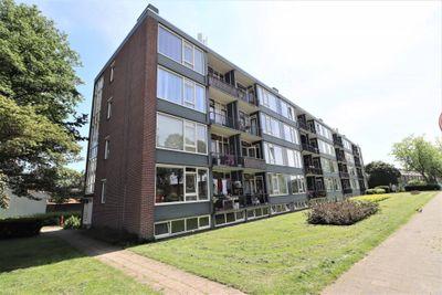 Groene Woud, Breda