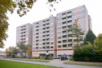Laan van Borgele, Deventer