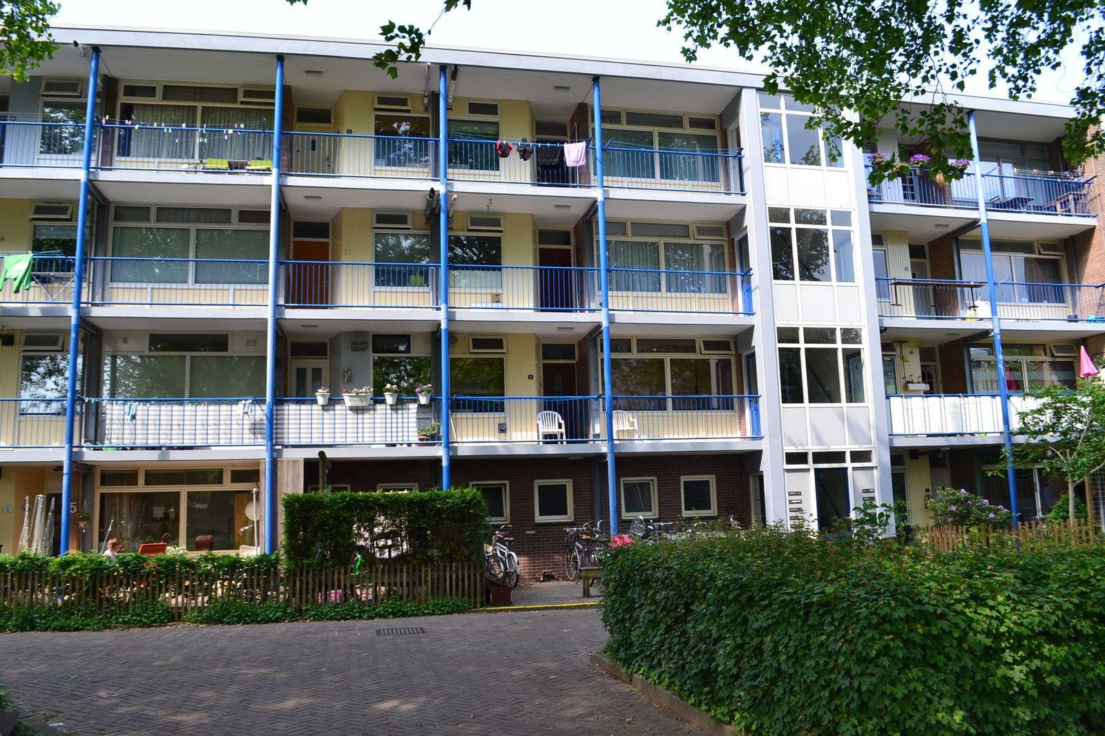 Dr Dassenstraat, Hoogeveen
