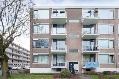 Schalkeroord 100, Rotterdam
