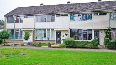 Straat Malakka 20, Veendam