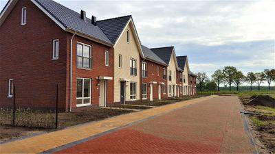 Compagnie, Steenwijk