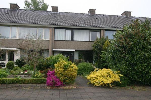 Weezenhof 2005, Nijmegen
