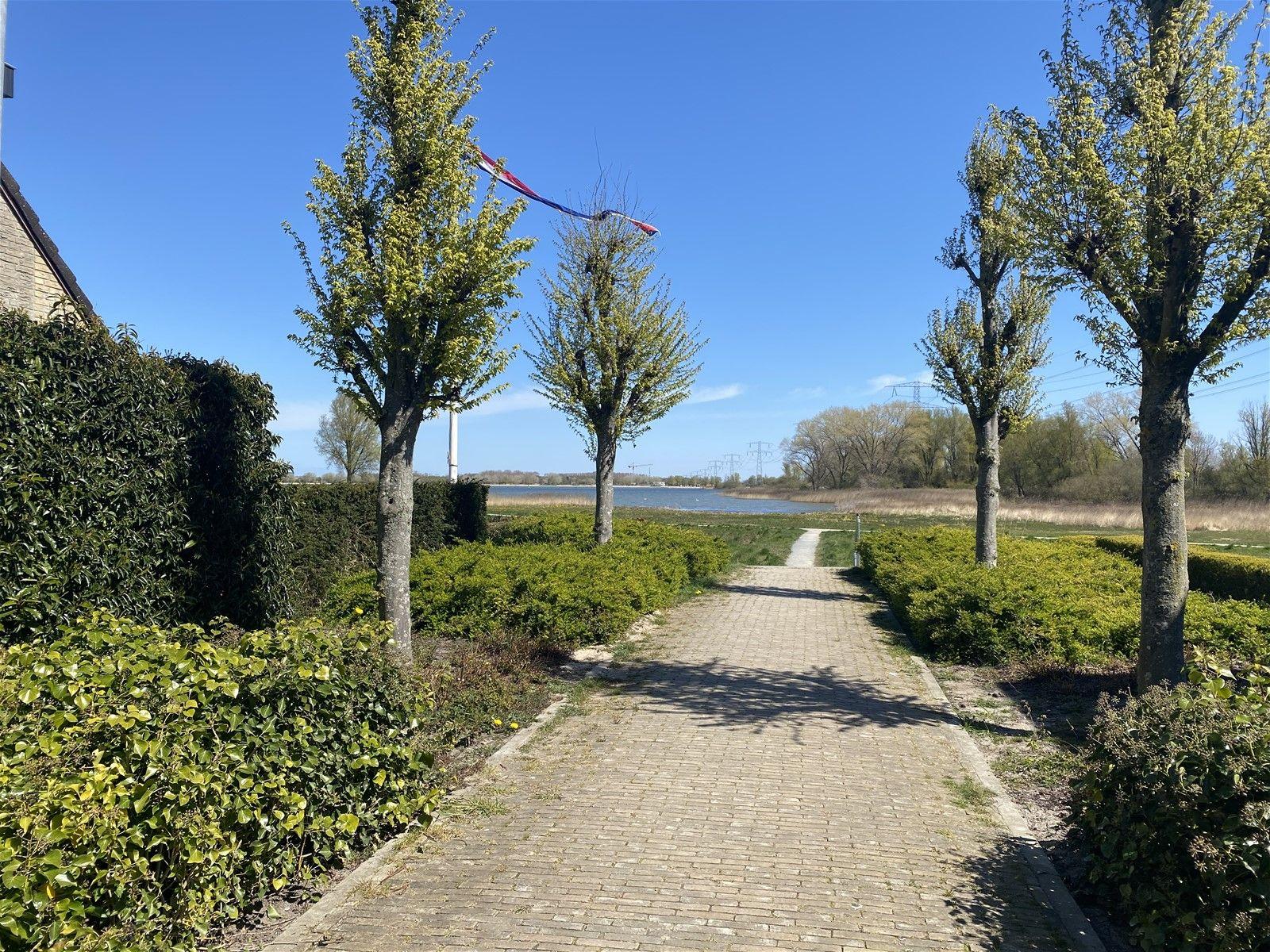 Waterhoen 1, Muiderberg