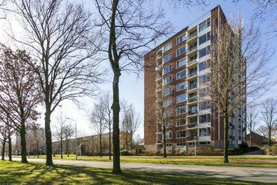 Pisanostraat 188, Eindhoven