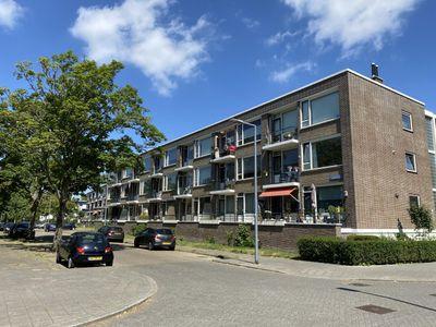 Paltroklaan 77, Rotterdam