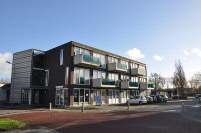 Pinksterbloemlaan 8, Arnemuiden