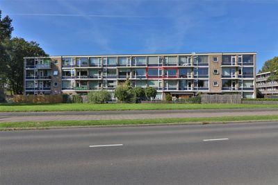 De Reiger 181, Hoogeveen