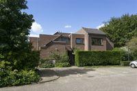 Schaepmanplein, Leiden