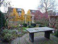 Meester van Goerlestraat, Den Bosch