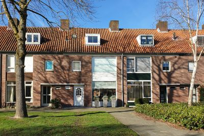 Pelsakker 20, Breda