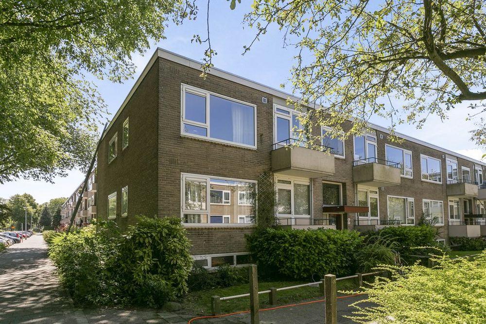 Helperzoom 155, Groningen
