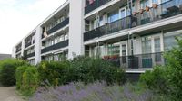 Stavenissestraat 295, Rotterdam