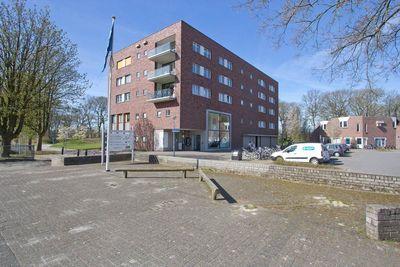 Mantingerbrink, Emmen